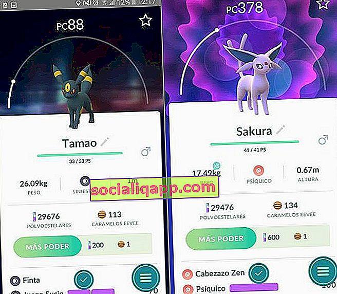 Pokémon GO Cara mendapatkan evolusi baru Eevee Android